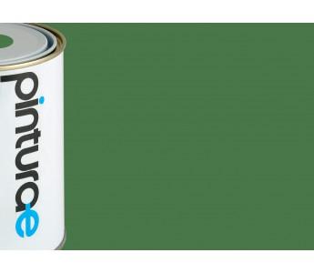 Pintura pl stica verde natural intenso - Mejor pintura plastica ...