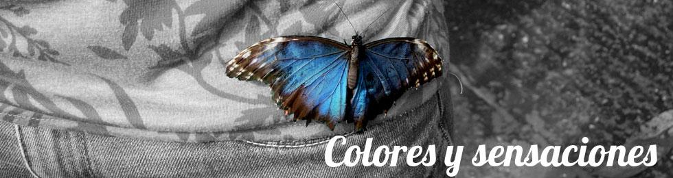 colores y sensaciones